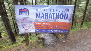 Everest Marathon Sign