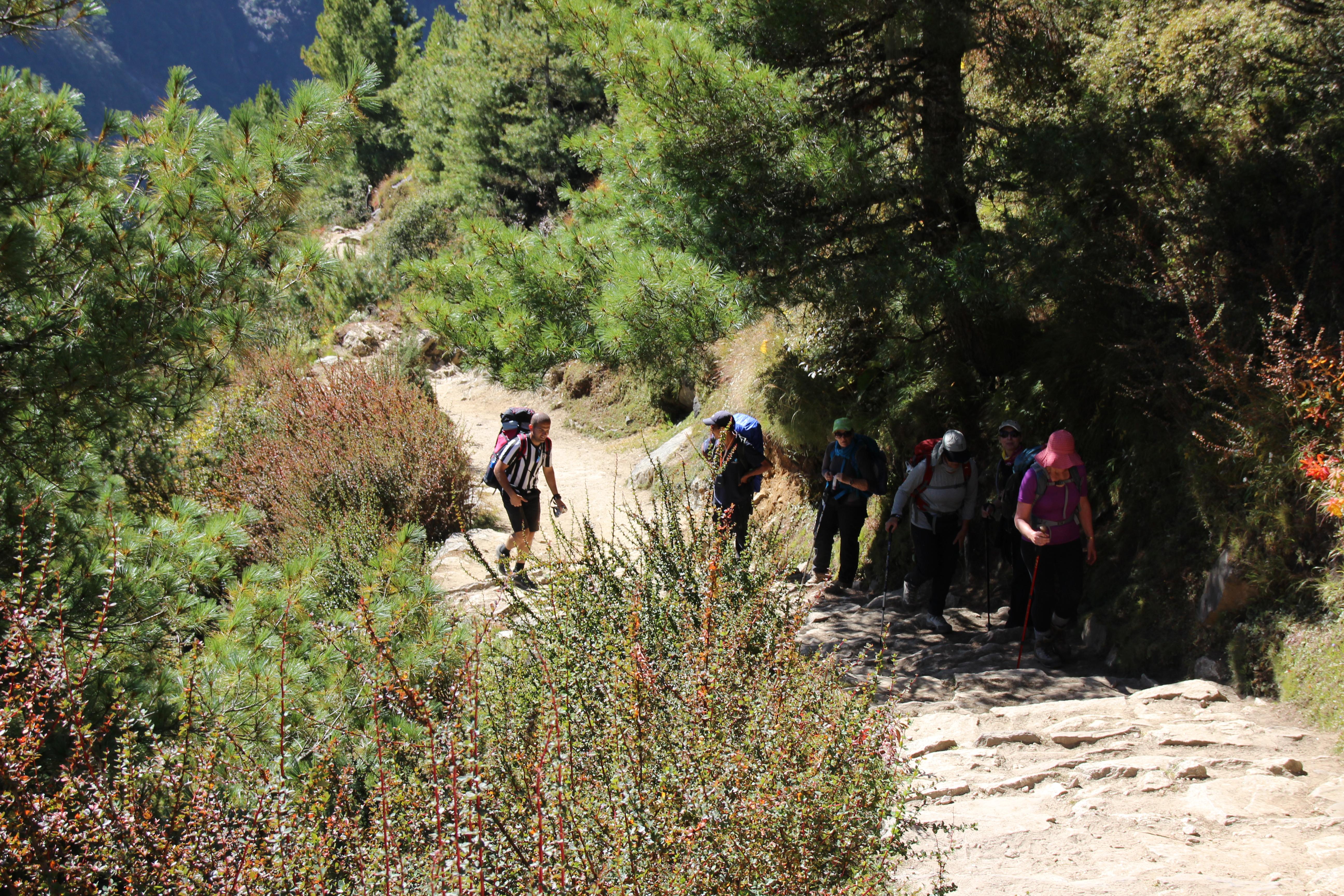 Group Trekking Up a Hill