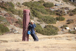 Porter carrying carpet up the mountains