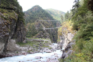 Suspension Bridges - Far View (2)