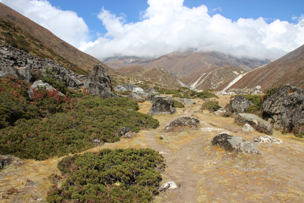 Trail to Dingboche (2)