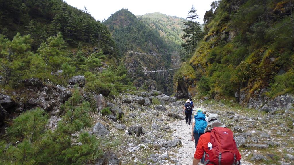 Trek to Suspension Bridges