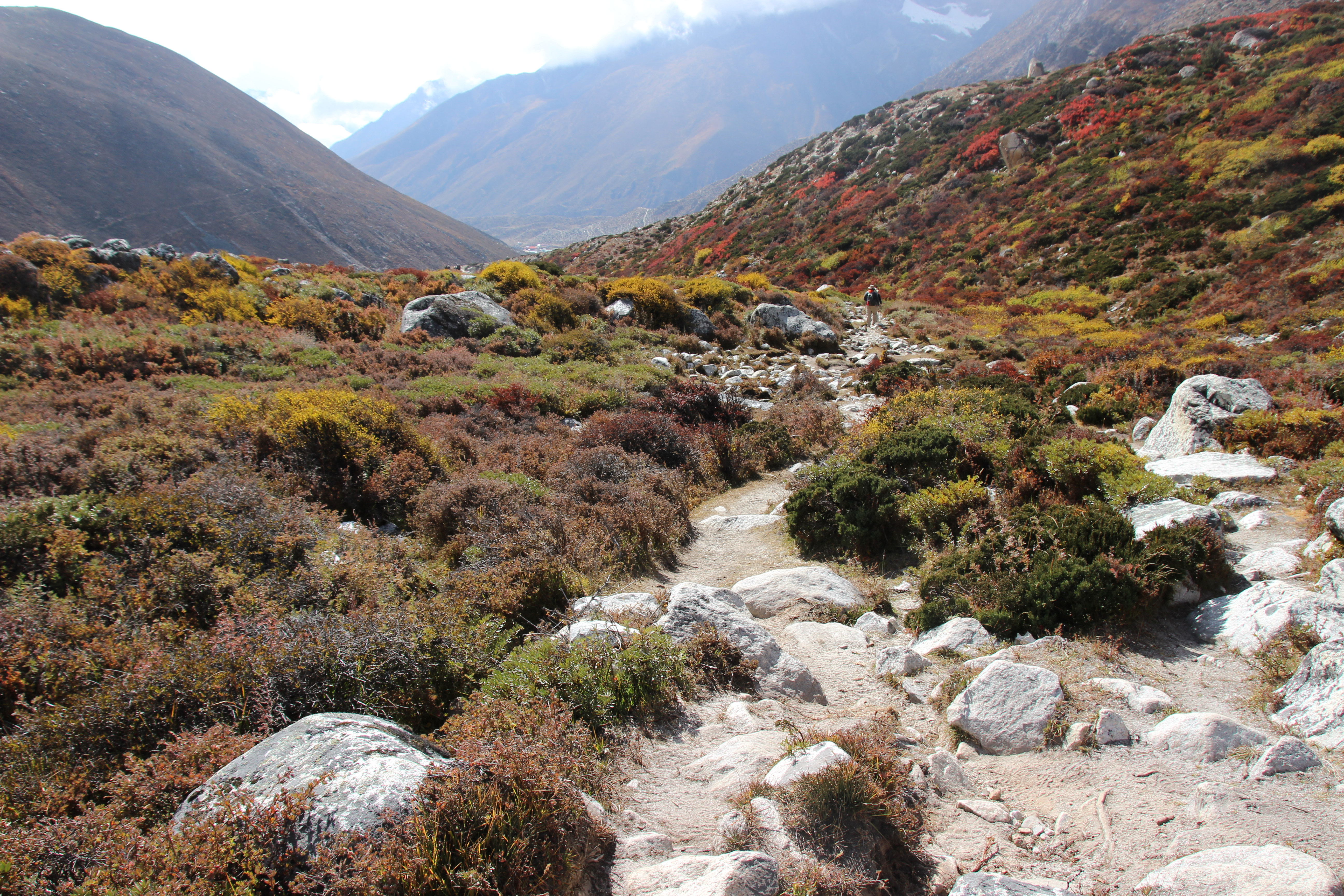 Trail to Chhukung Valley